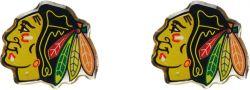 BLACKHAWKS TEAM POST EARRINGS
