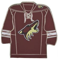 COYOTES TEAM JERSEY PIN